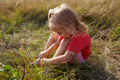 Girl on a meadow Royalty Free Stock Image