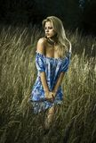 Girl in meadow Royalty Free Stock Photos
