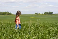 Girl on meadow Royalty Free Stock Image