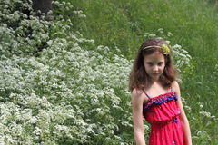 Girl in a meadow blossoming Stock Photos