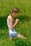 Girl on the meadow. The girl collects flowers on a meadow Stock Image