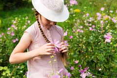 Girl on the meadow with flowers. royalty free stock image