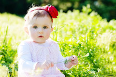 Girl on meadow Stock Images