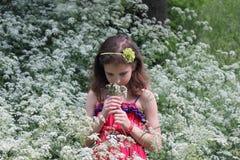 Girl on a meadow Royalty Free Stock Photos