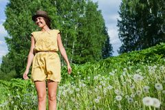 Girl in a meadow Stock Images