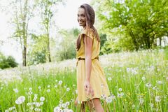 Girl in a meadow Royalty Free Stock Photos
