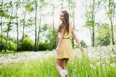 Girl in a meadow Stock Photos