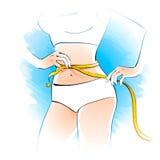 Girl measuring her waist Stock Image