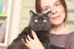 Girl medical mask on her face is holding British cat breed.toxoplasmosis protection against cat infection for humans stock photo