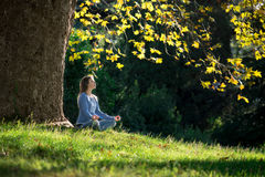 Girl meditates sitting on the grass under maple tree in autumn Royalty Free Stock Images