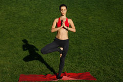Girl meditating on a sunny day. Woman practices yoga in nature Royalty Free Stock Photography