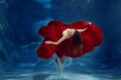 Girl mermaid. Underwater scene. A woman, a fashion model in the Stock Photography