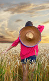 Girl, with mexican hat, in the cornfield Royalty Free Stock Photos