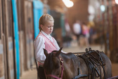 Girl with miniature horse at state fair Royalty Free Stock Image