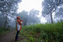 Girl in the mist Stock Image
