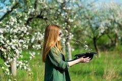 The girl model in an apple-tree garden. stock image