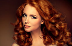 Girl model with long curly red hair. Royalty Free Stock Image