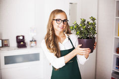 Girl with a money Tree is at home Stock Images