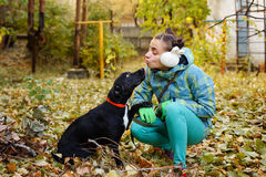 Girl and mongrel dogs Stock Photo