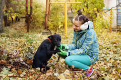 Girl and mongrel dogs Royalty Free Stock Photos