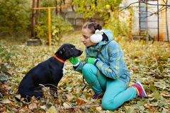 Girl and mongrel dogs. A girl and a black mongrel dog. Autumn day. Caring for animals Stock Image