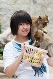 Girl with monkey Stock Photos