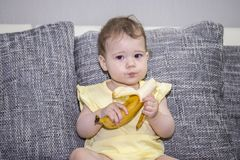 The girl of 10 months eats a ripe banana sitting on a gray sofa. A small child eats exotic fruits. Girl in yellow with a banana in. Her hands. Serious little royalty free stock photos