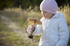 Girl with the mushroom Stock Images