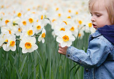 Girl and narcissus Stock Photo