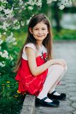 Girl near apple tree flowers in the park Royalty Free Stock Images