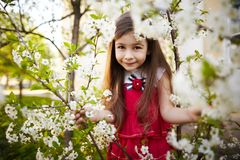 Girl near the apple tree flowers Stock Images