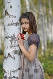 The girl near the birch Stock Image