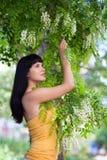 Girl near blossom acacia tree Royalty Free Stock Photography
