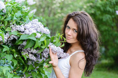 Girl near blossoming lilac Stock Images