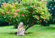 Girl near blossoming rose bush Royalty Free Stock Photos