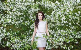 Girl near a bush of white flowers Stock Image