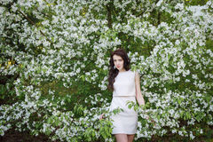 Girl near a bush of white flowers Stock Images