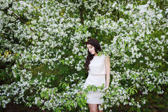 Girl near a bush of white flowers Royalty Free Stock Photos