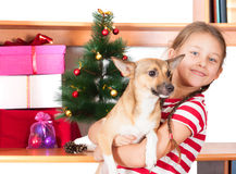 Girl  near the Christmas tree Stock Photography