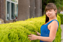 Girl near a green bush Royalty Free Stock Image