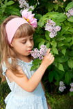 Girl near the lilac bushes Royalty Free Stock Photography