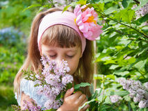 Girl near the lilac bushes Royalty Free Stock Photo