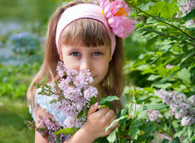 Girl near the lilac bushes Royalty Free Stock Photos