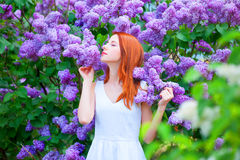 Girl near lilac tree Royalty Free Stock Photos