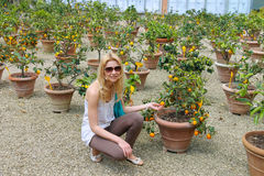 Girl near the potted citrus Stock Image