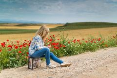 Girl Near Red Petal Flowers at Daytime Stock Photography