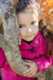 Girl near a tree in the park. Girl near a tree in park Royalty Free Stock Image