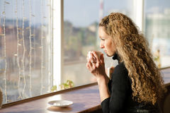 Girl  near the window Stock Photos