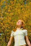 Girl near yellow flowers tree Stock Photos