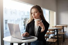 Girl never lives home without laptop. Indoor portrait of good-looking modern woman in cafe, drinking coffee while stock photography